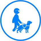 Ayudas Vivas - Perro Guía