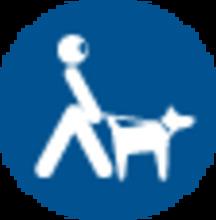 mascotas-04.png