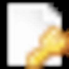 page_white_key.png
