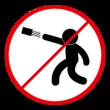 Arrojar objetos sobre TransMilenio