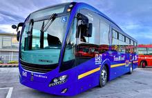 Bus eléctrico 2019