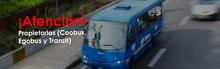 Bus del Coobus, Egobus y Tranzit