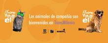 Los animales de compañía son bienvenidos en TransMilenio