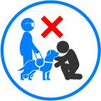 No jugar con perro lazarillo