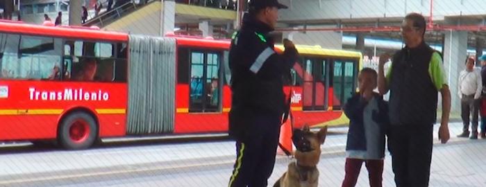 Conoce la función del equipo canino de TransMilenio